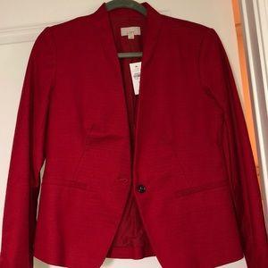 Ann Taylor LOFT Suit Jacket